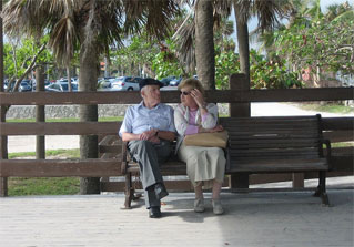 couple palm trees bench